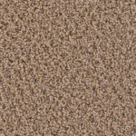 One Solution - Palmetto Carpet Flooring